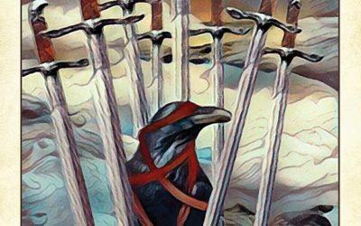 Crow Tarot Review